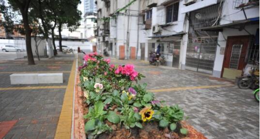 江西:居民自治闯出新路 老旧小区换新颜